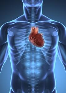 Cardiovascular Health (2)