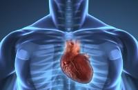 CardiovascularHealth